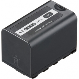 PANASONIC BATTERIE VW-VBD58